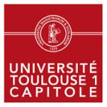 toulouse_capitole2